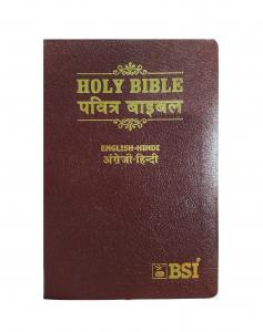 Biblia Bilingüe Hindi-Inglés
