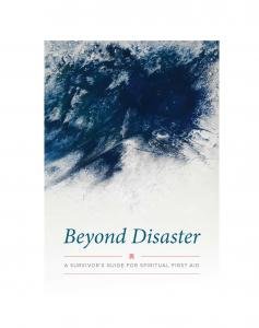 Beyond Disaster