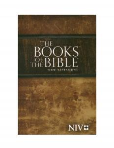 NIV Community Bible Experience New Testament - The Books of the Bible