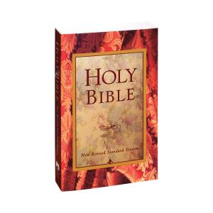 NRSV New Revised Standard Version Bible