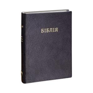 Ukranian Bible Vinyl Cover