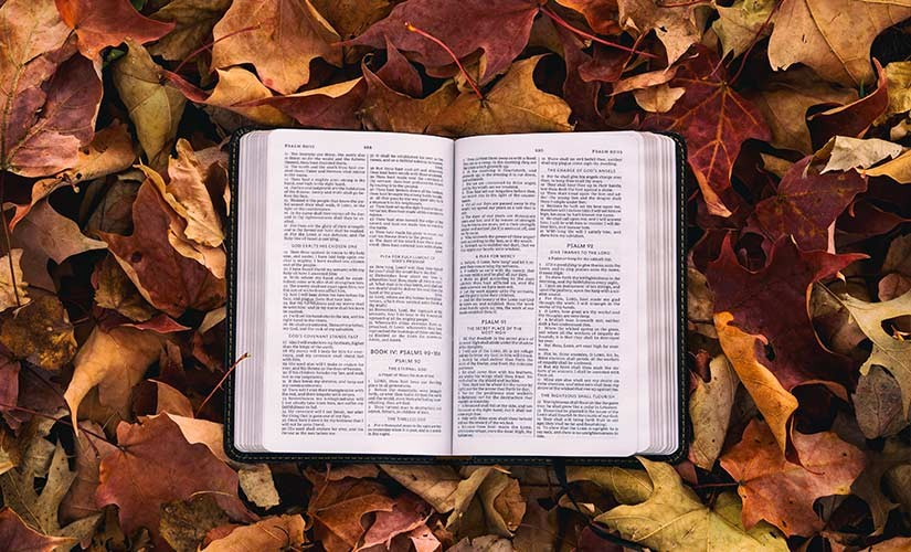 4 Ways to Pray on International Day of the Bible