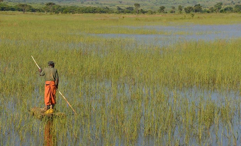 Praying for the Nyaneka-Mwila People of Angola
